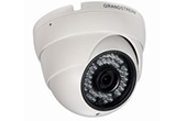 Camera IP Grandstream | Camera IP Dome hồng ngoại Grandstream GXV3610-HD