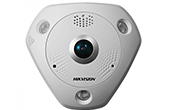 Camera IP HIKVISION | Camera IP Fisheye hồng ngoại 6.0 Megapixel HIKVISION DS-2CD6362F-I