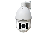 Camera IP eView | Camera IP Speed Dome hồng ngoại eView SD5N50F