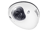 Camera IP Vivotek | Camera IP Dome 2.0 Megapixel Vivotek MD8563-DEH