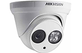 Camera IP HIKVISION | Camera IP Dome hồng ngoại 2.0 Megapixel HIKVISION DS-2CD2321G0-I/NF