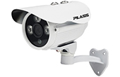 Camera IP PILASS | Camera IP hồng ngoại 2.0 Megapixel PILASS ECAM-PH602IP 2.0
