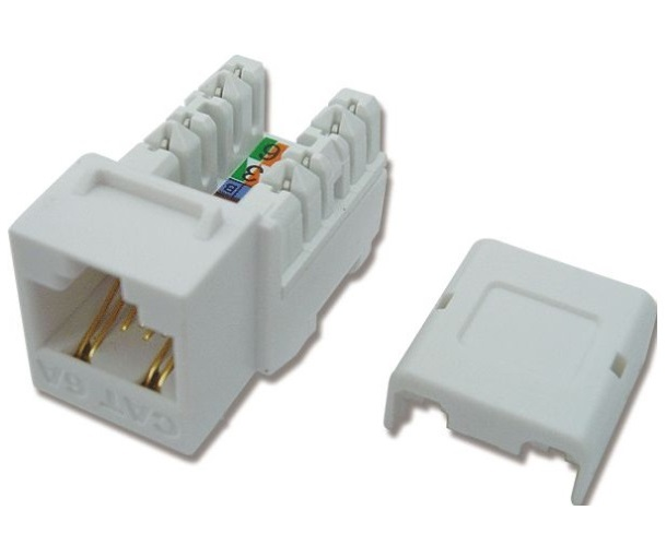 Modular Jack - Ổ cắm CAT.6A for 10GB DINTEK (1305-05008)