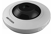 Camera IP HIKVISION | Camera IP Fisheye hồng ngoại 3.0 Megapixel HIKVISION DS-2CD2935FWD-IS